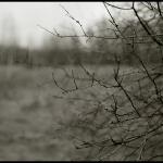 nature_024